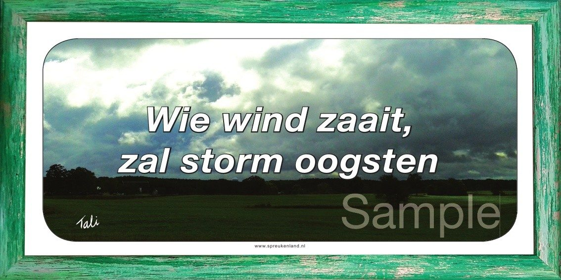 Wie wind zaait, zal storm oogsten
